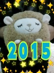 2014-12-28-17-30-47_deco.jpg